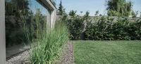 30_bepflanzung_wegefuehrung